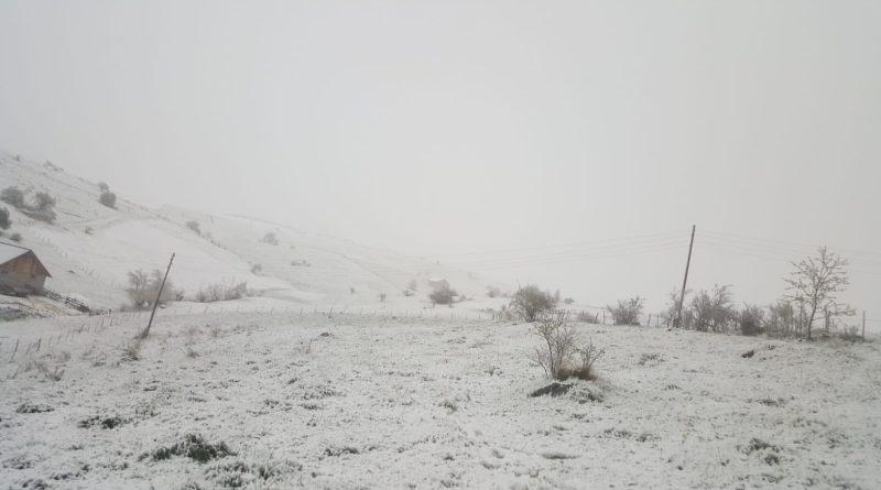Snijeg Sjenica