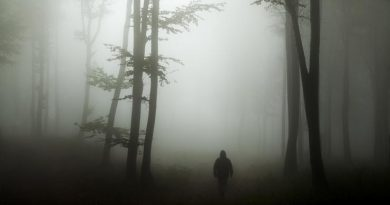 Nestala osoba - nestale osobe