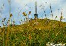 Najviši vrh Vlašića-Paljenik