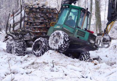 Godišnje se ukrade dva miliona kubika šume
