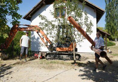 I to se dešava: Njemačka porodica se doselila u BiH!